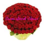 Букет 151 роза