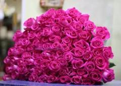 Букет 71 роза